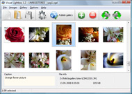 Photo Gallery In Silverlight Flickr Jquery Flickr Plugin Wordpress