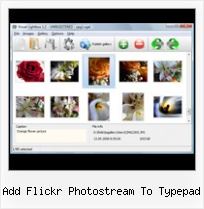 Add Flickr Photostream To Typepad Flash Gallery Flickr With Captions