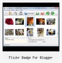 Flickr Badge For Blogger Slideshow Autostart Embed Flickr Html Code