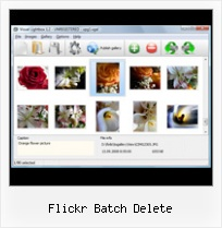 Flickr Batch Delete Flickr Html Products Page