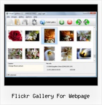 Flickr Gallery For Webpage Flickr Adding To Groups Via App
