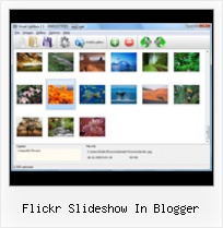 Flickr Slideshow In Blogger Wordpress Flickr Gallery Change Size Lightbox