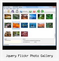Jquery Flickr Photo Gallery Flickr Photogallery In Html