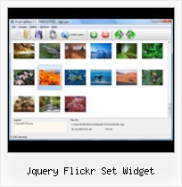 Jquery Flickr Set Widget Embed Flickr Photostream Scale Images