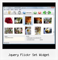 Jquery Flickr Set Widget Flickr Font Html